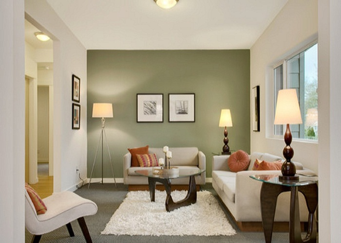 comfortable-small-living-room-with-green-colored-accent-wall-painting-colors-ideas-for-room-with-cute-design